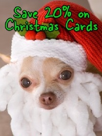 Save 20% on Christmas Cards